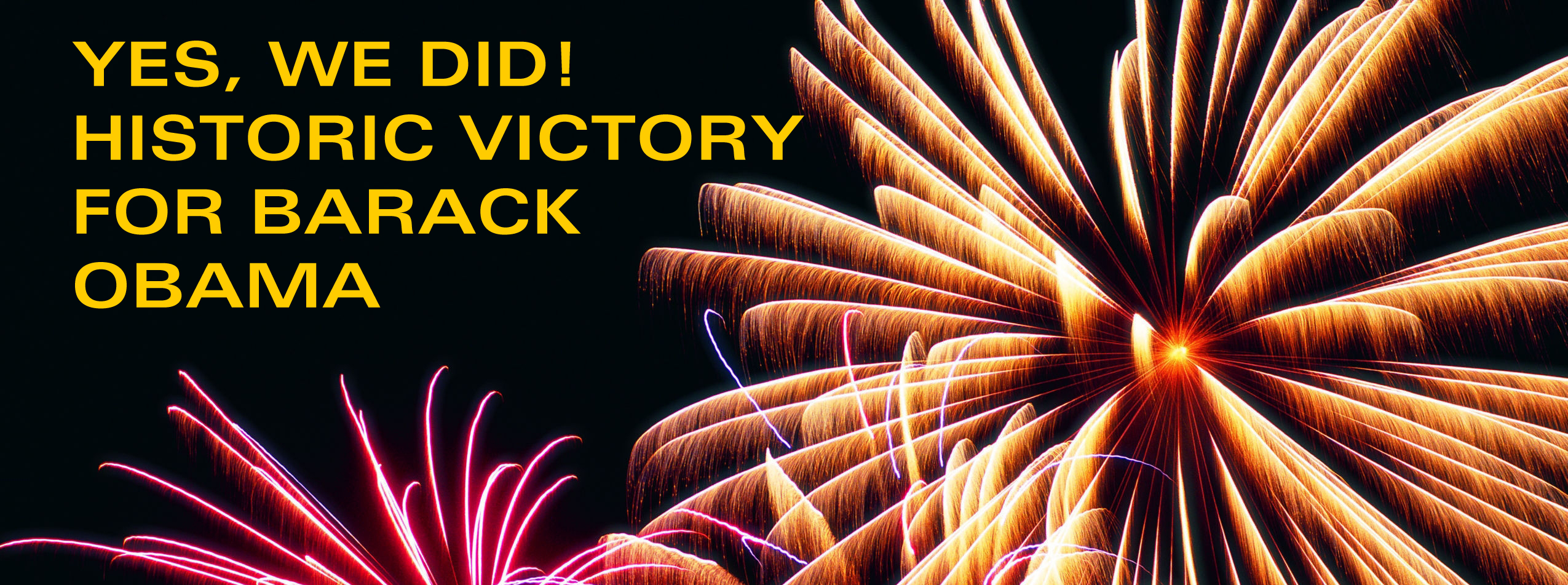fireworks_win copy.jpg