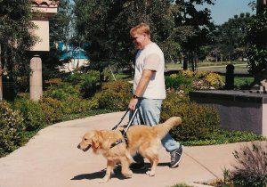 Guide Dog Team