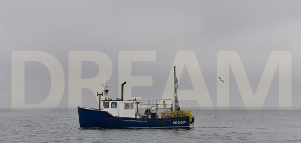 'A Dream' Comes True: IAM Maine Lobstermen Buy Wholesale Lobster Business, Form Co-Op