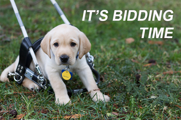 Time Running Out to Bid in Guide Dogs of America Auction
