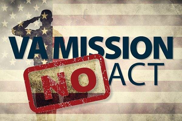 Tell Your Senators to Vote 'No' on Gutting the VA