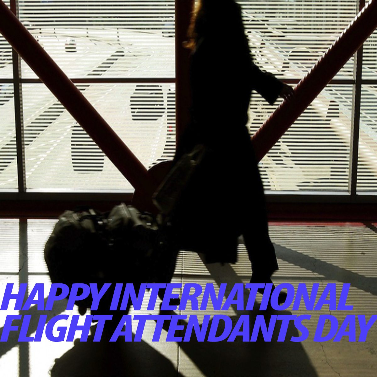 IAM Celebrates International Flight Attendants Day