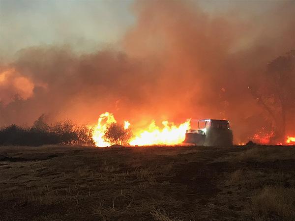 NFFE-IAM Members Battling California Wildfires