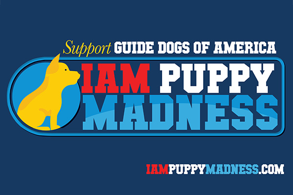 Vote Now to Pick the Cutest IAM Dog