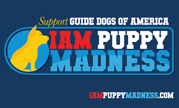 Still Time to Vote for the Cutest IAM Dog