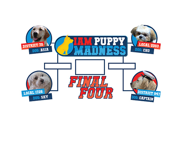 IAM Puppy Madness is Down to the Final Four