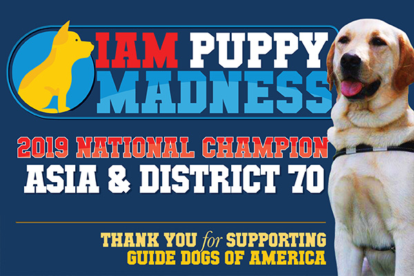 IAM Puppy Madness: You Voted and There's a New Champion