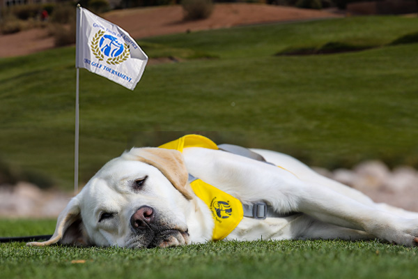 Peace, Love, Golf and Guide Dogs of America