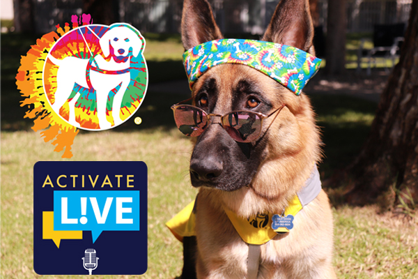 This Week, Activate L!VE Goes to the Dogs