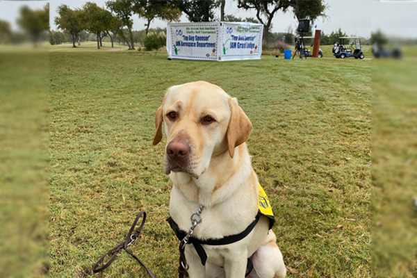Texas District 776 Raises $100K for Guide Dogs
