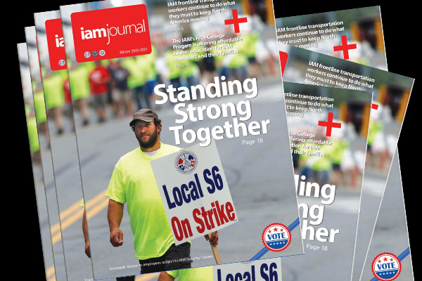 Introducing the Winter 2020-2021 IAM Journal