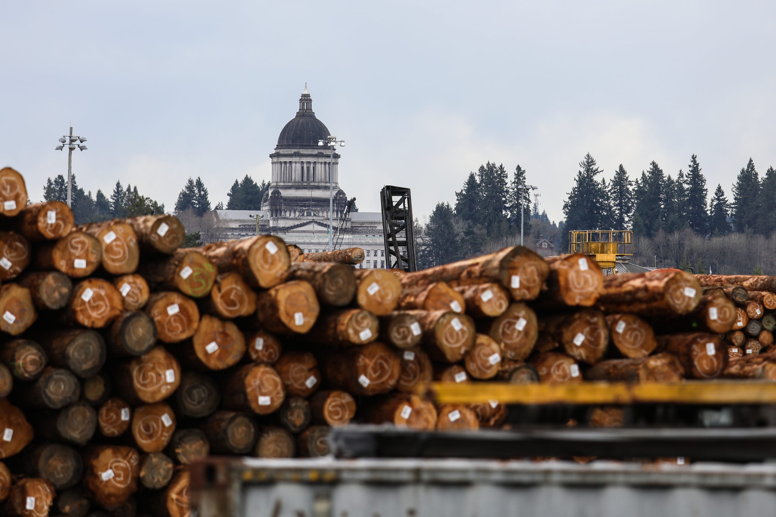 Machinists Join Fight to Protect Washington State Forestry Jobs