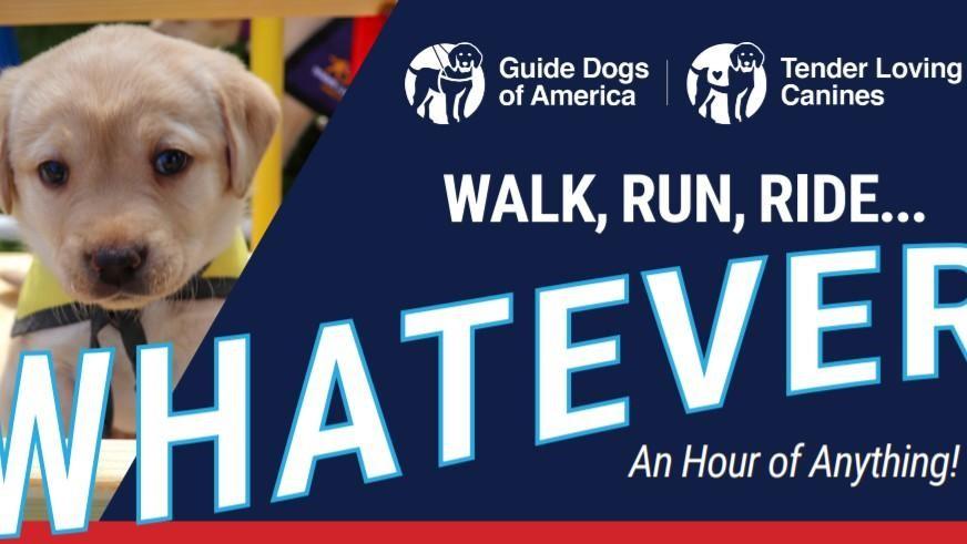 GDA Holding Walk, Run, Ride…Whatever Fundraiser